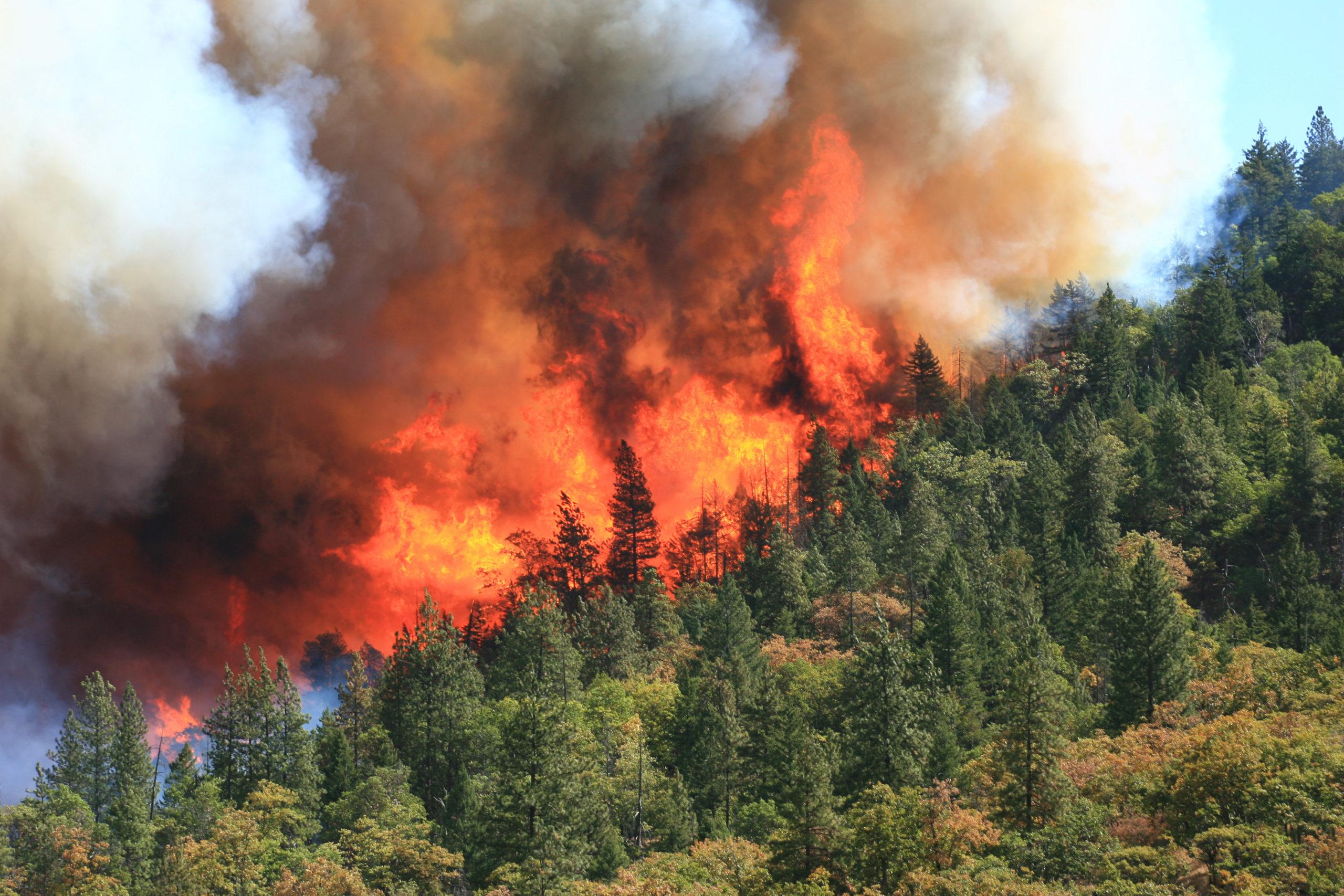 Siskiyou Fire - 2009